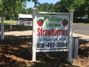 phillips farms strawberry sign cary, nc