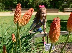 g at gardens